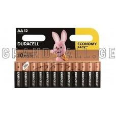 Duracell AA Alkaline batteries (12 pc.)