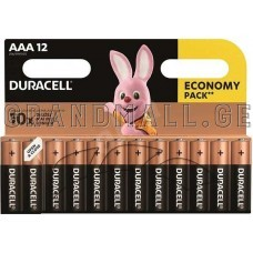 Duracell AAA Alkaline batteries (12 pc.)